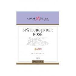 2019er Spätburgunder Rosé...