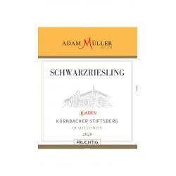 2018er Schwarzriesling...